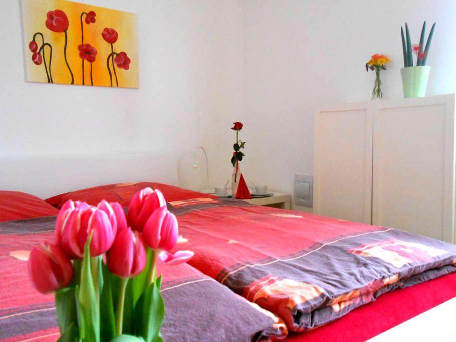 cozy apartment, excellent location - 奥洛穆克(Olomouc) - 独立屋