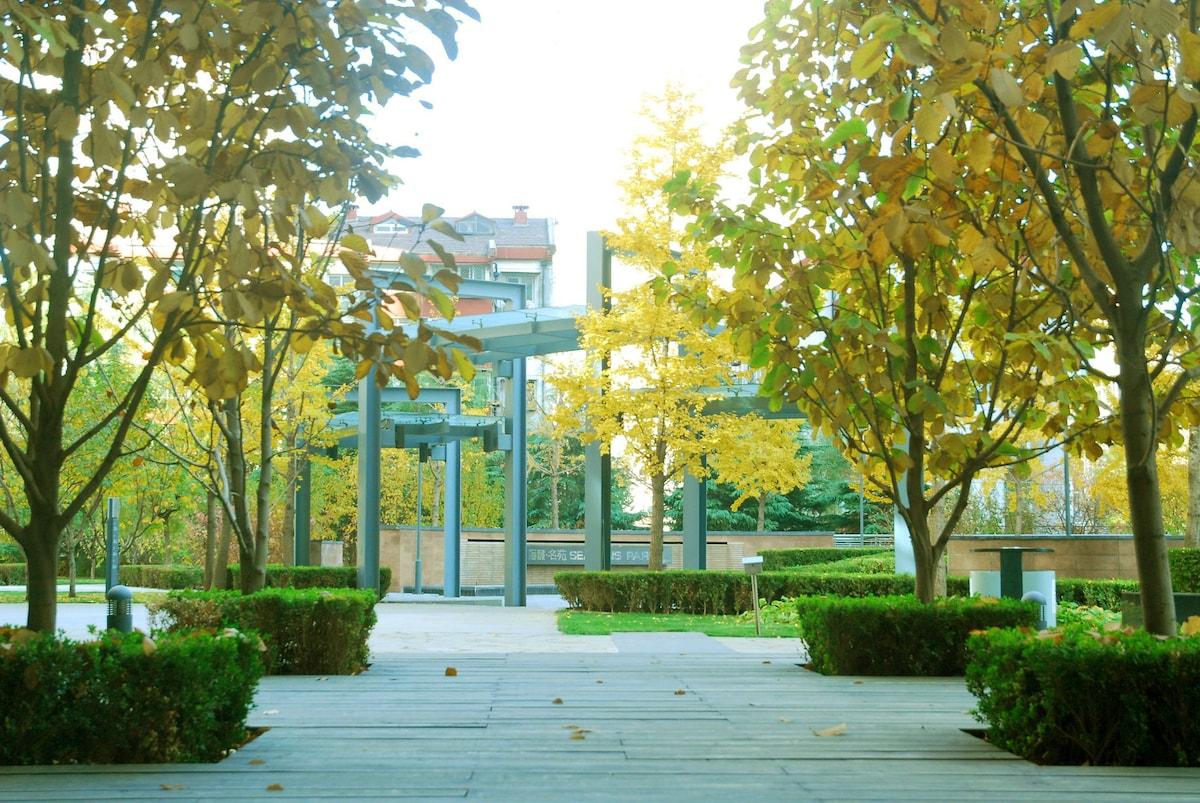 Delicate Apartment, Dongzhimen Area