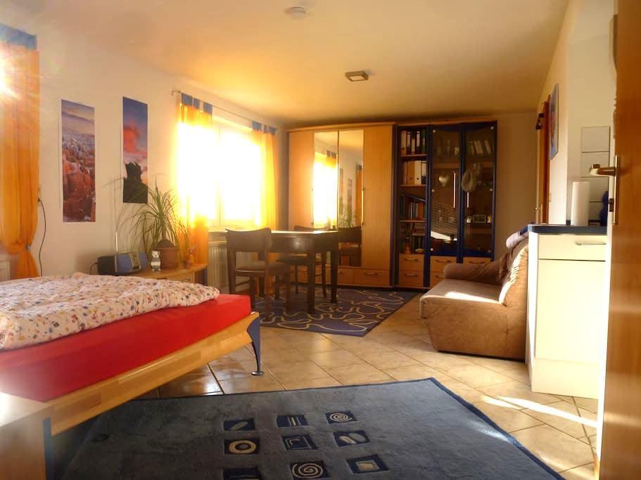 Ruhiges, gemütliches 1 Zi. Appartement im Grünen - Nordheim