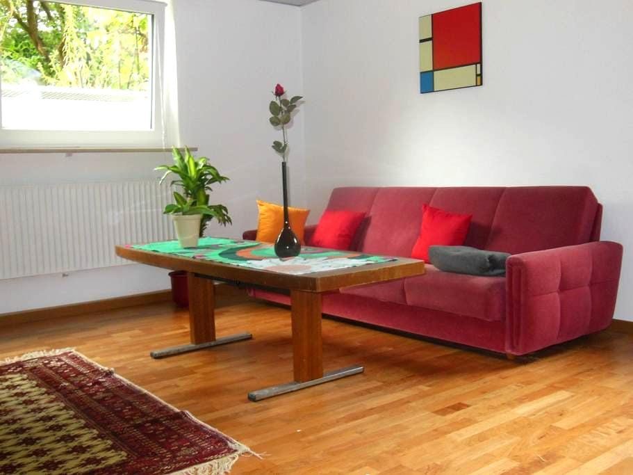 Complete and Lovely Holiday Home in the Souterrain - Forchheim - 아파트