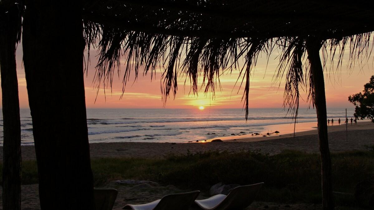 the back yard : shady hammock spot on the beach