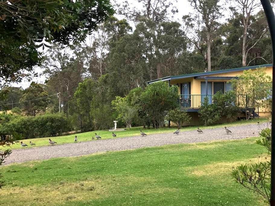 Kalaru Lodge cottages   Farmstay - Kalaru - บังกะโล