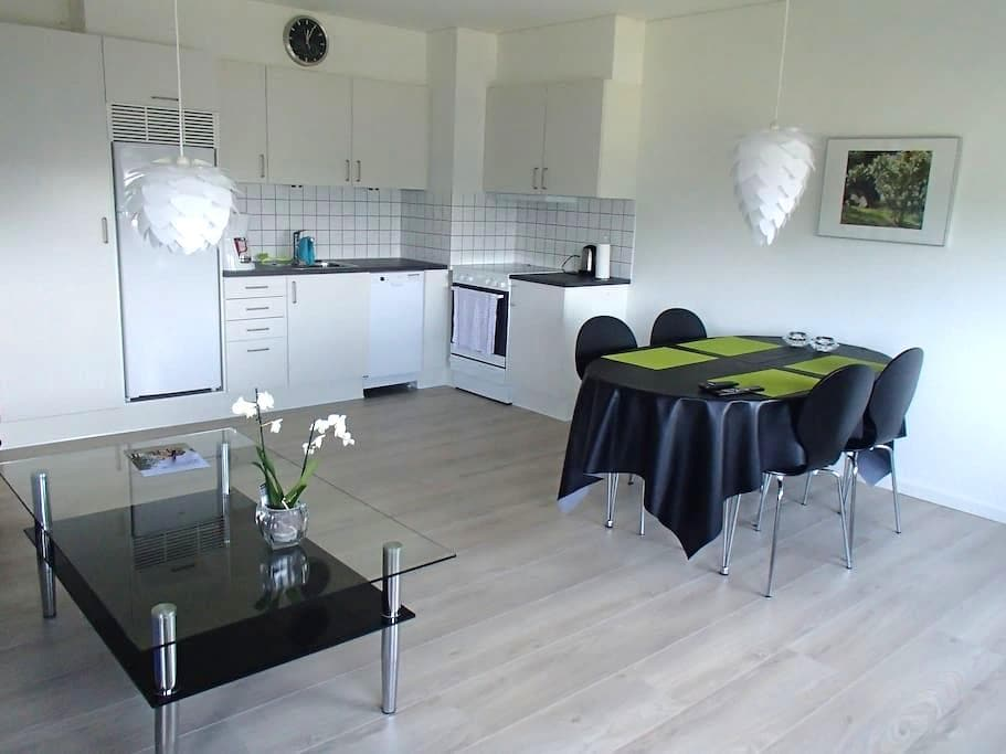 Cool new renovated apartment!!  - Herning - Appartement