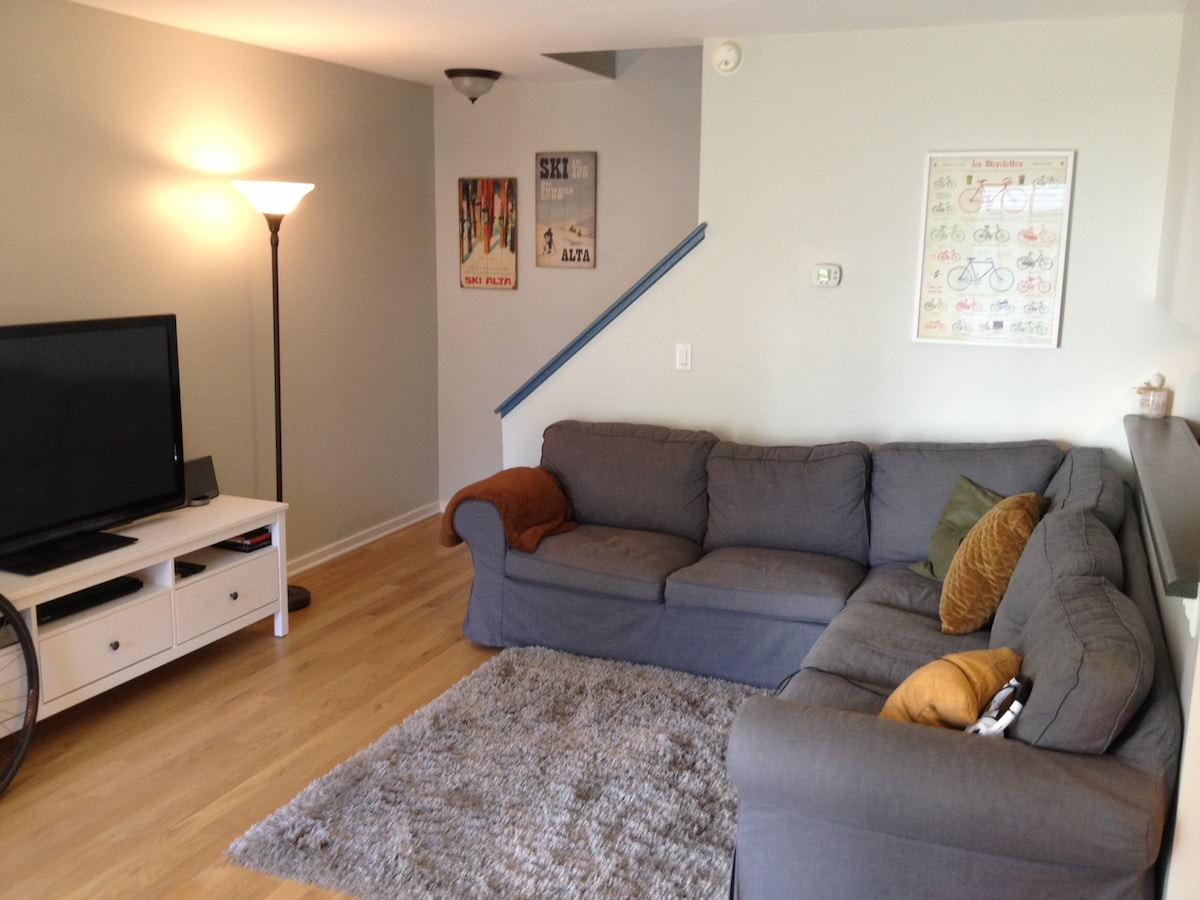My wife's newly remodeled living room: new TV, new couch, new hardwood floors.