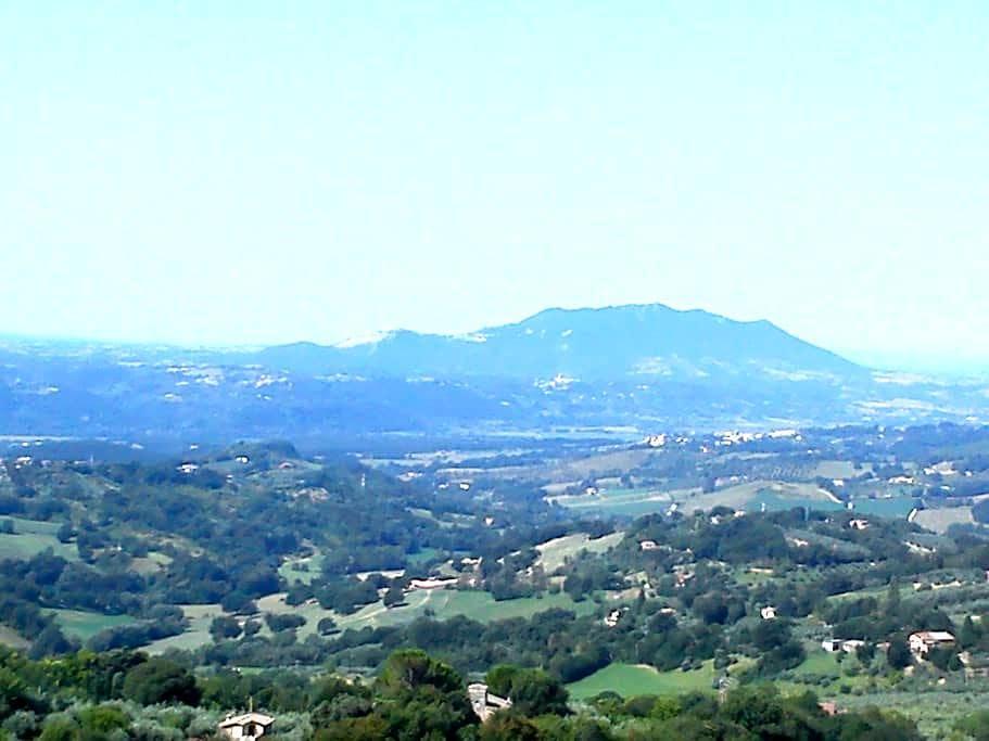 Villa Rovere - Poggio Catino - Wohnung