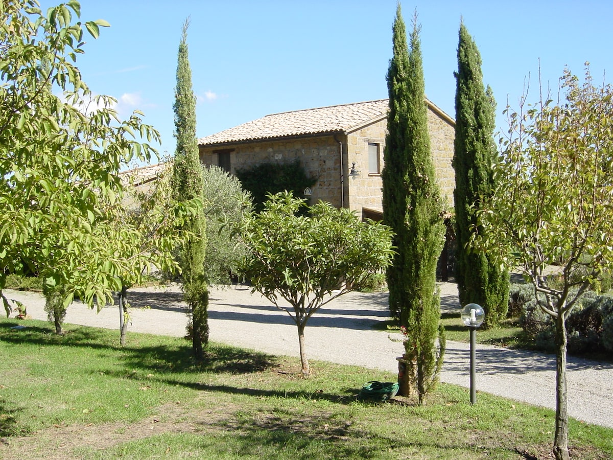 Driveway/fruit trees, approach to house