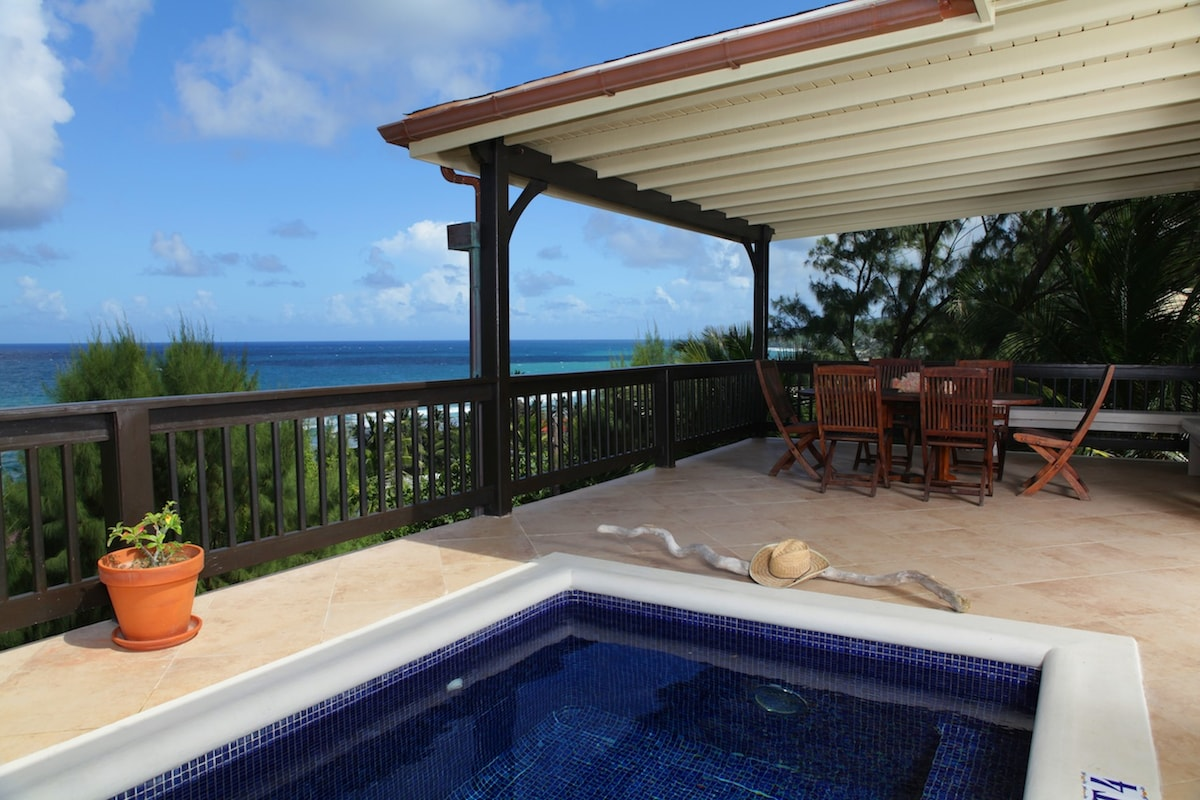 Upper Deck with Plunge Pool