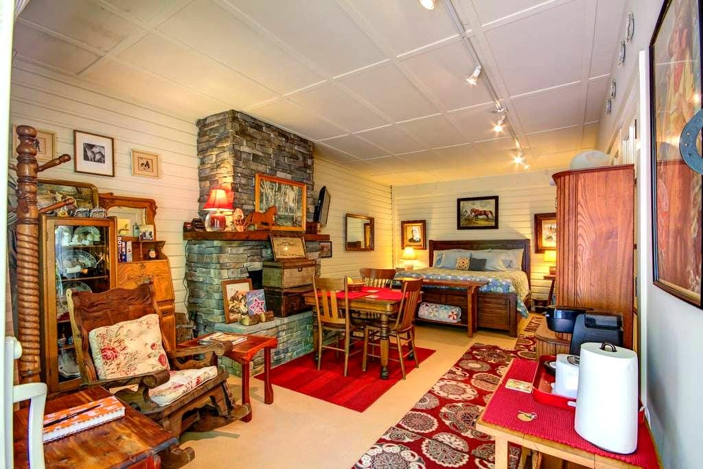 Historical Reames Carriage House - Jacksonville - Huis