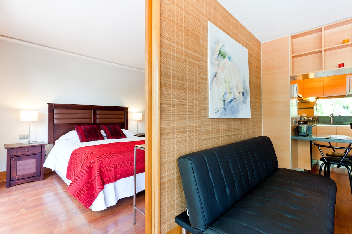 Furnished Luxury Apartment (2-Room)