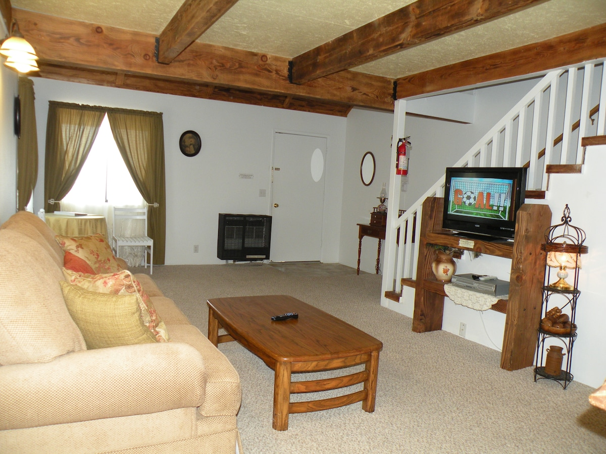 Downstairs private living room with queen sofa bed, kitchenette, bathroom & dining table.