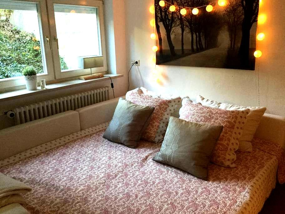 Cosy and big room in family home - Tübingen - Huis