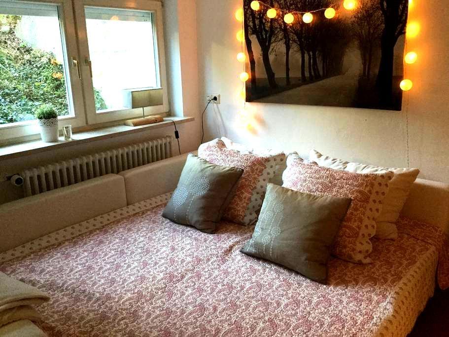 Cosy and big room in family home - Tübingen - Haus