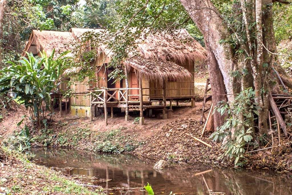 DreamCaught Treehouses - Riverfront Cabin 2 - Chiang mai  - Cabaña