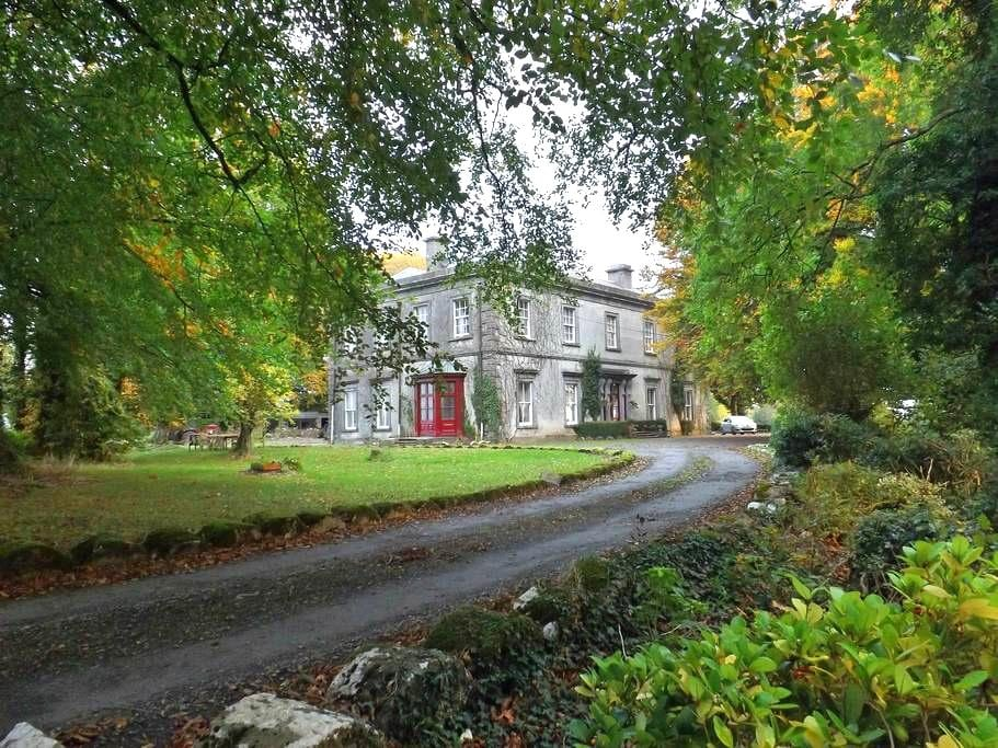 Self Catering Flat in 19th Century Georgian House - Birr - Apartment