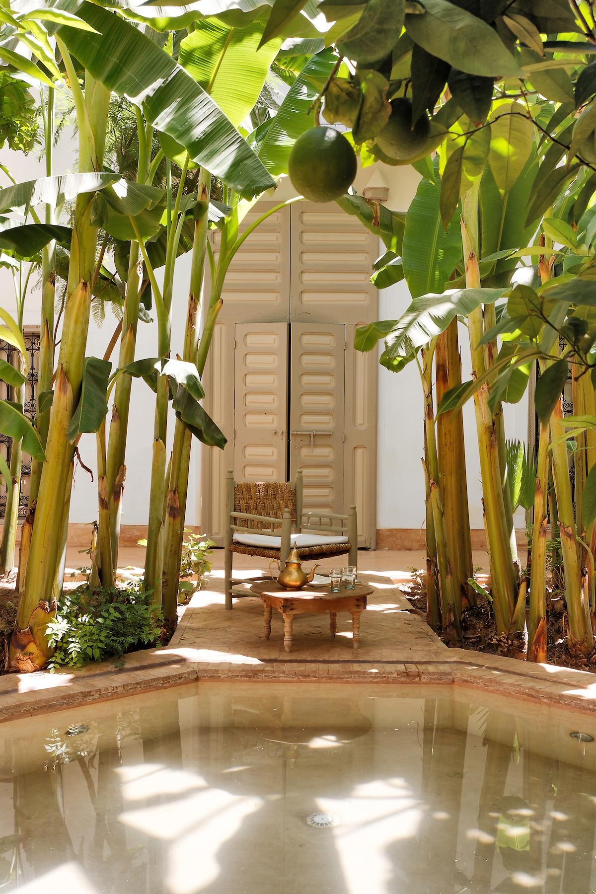 Riad authentique v ritable jardin marrakech for Jardin veritable