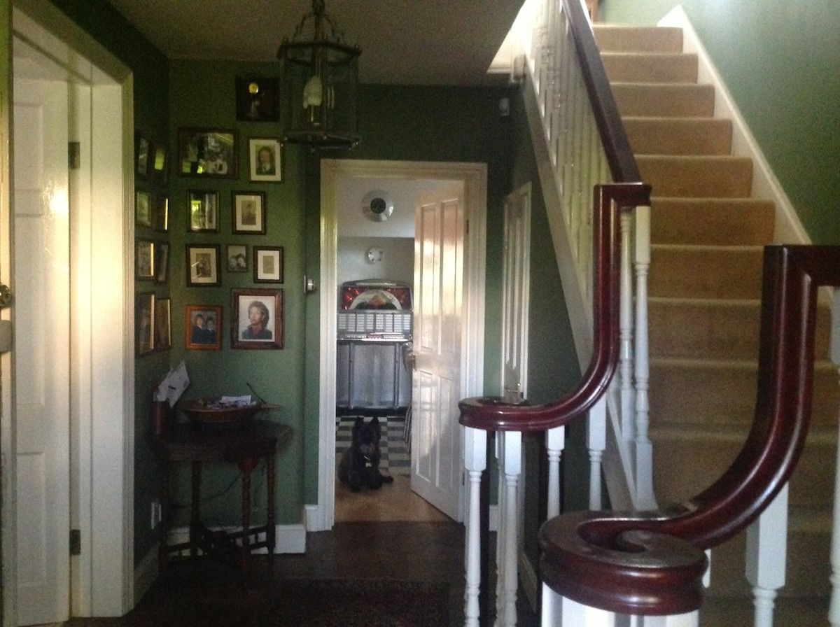Entrance hall leading to Kitchen/diner with Bertie on guard :-)