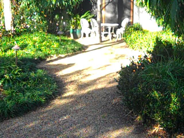breakfast in spring sunshine, view from bedroom front garden