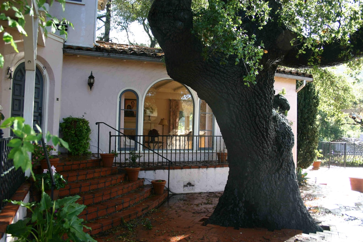 Front entrance with old oak tree.
