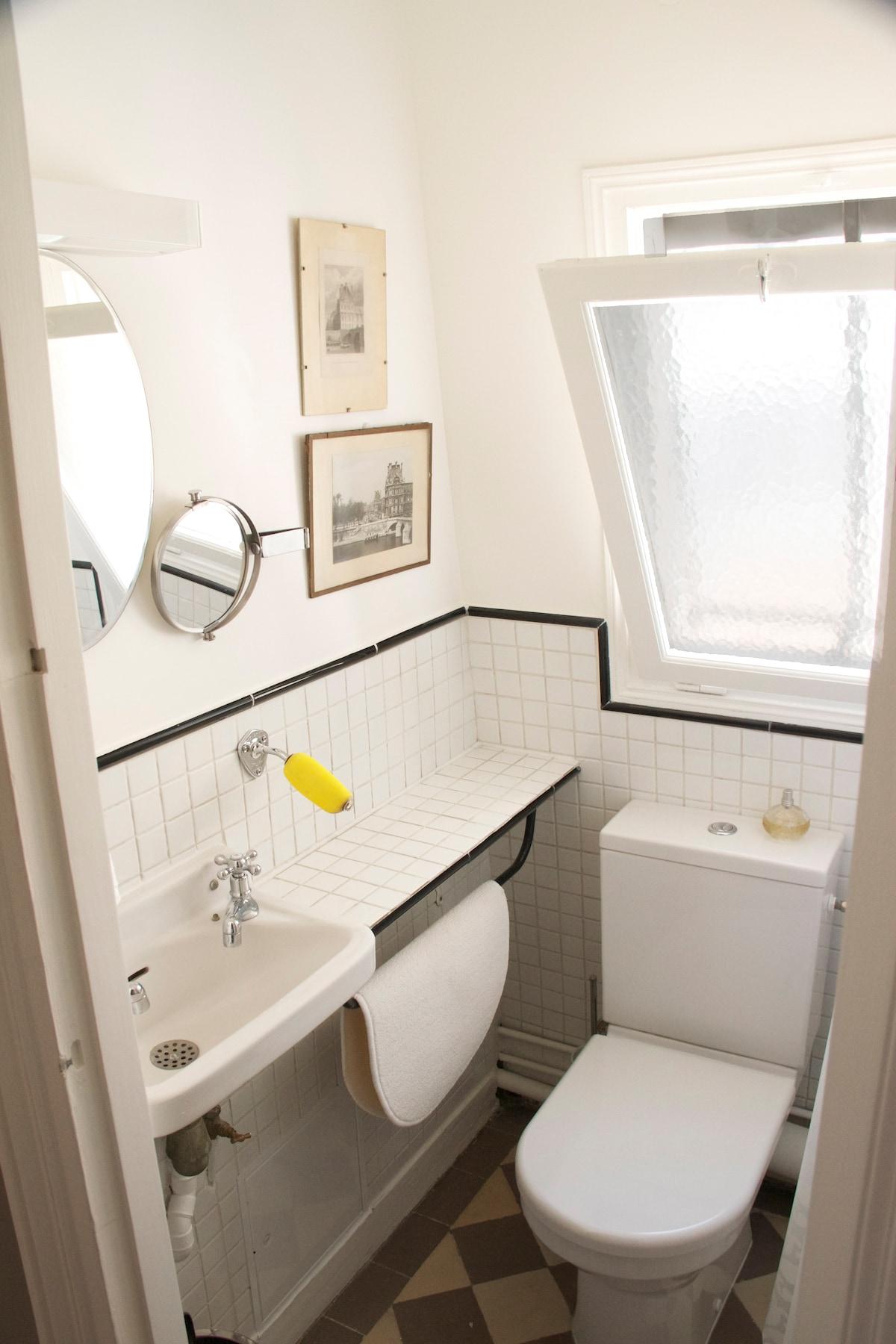 shower room with toilets salle d'eau: 1douche , 1 toilette, 1 lave main. Lumière du jour (daylight)