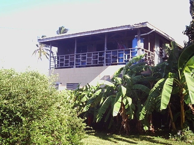 The apartment is below our house and surrounded by fruit trees!