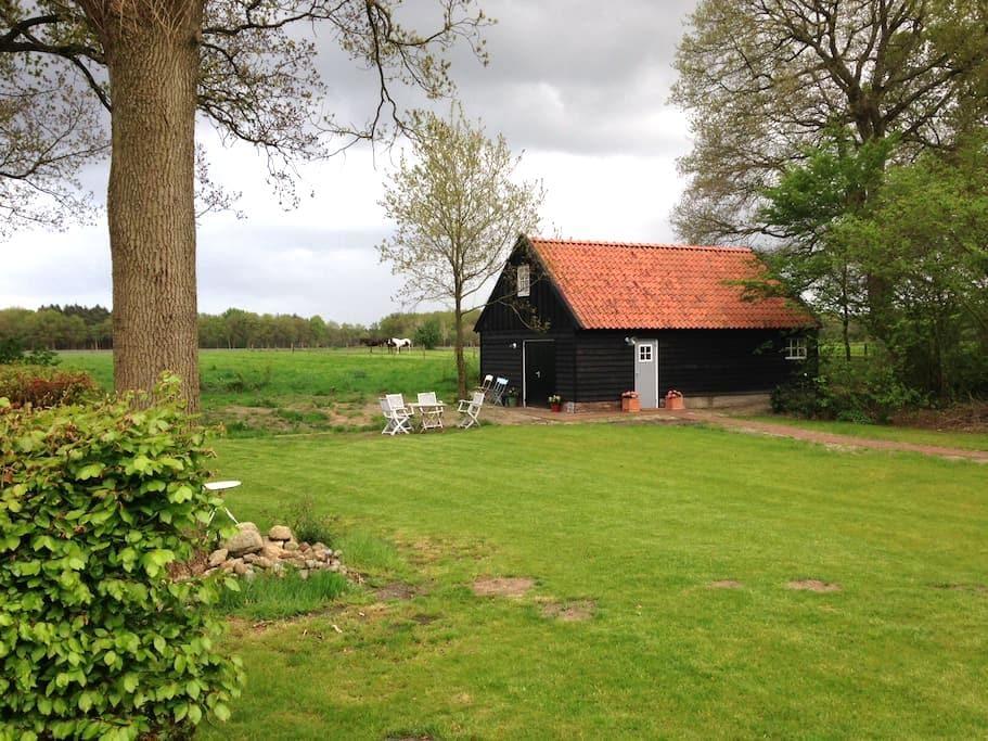 Rust en ruimte in Dwingeloo - Dwingeloo - Blockhütte