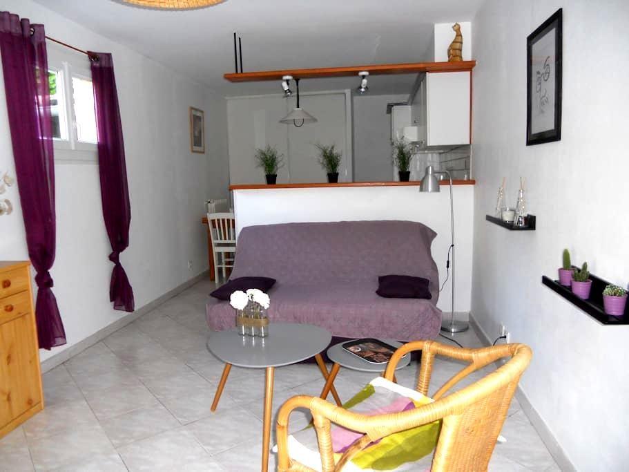 appartement  RDC villa individuelle - Millau - Apartment