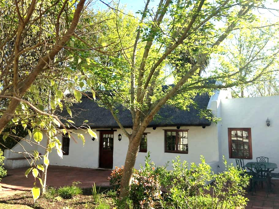 Potato Patch Self Catering Cottage - Greyton