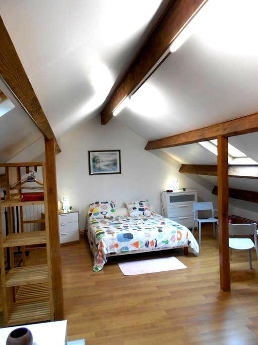Grand appartement indépendant au 1er étage Maison - Ozoir-la-Ferrière - Pis