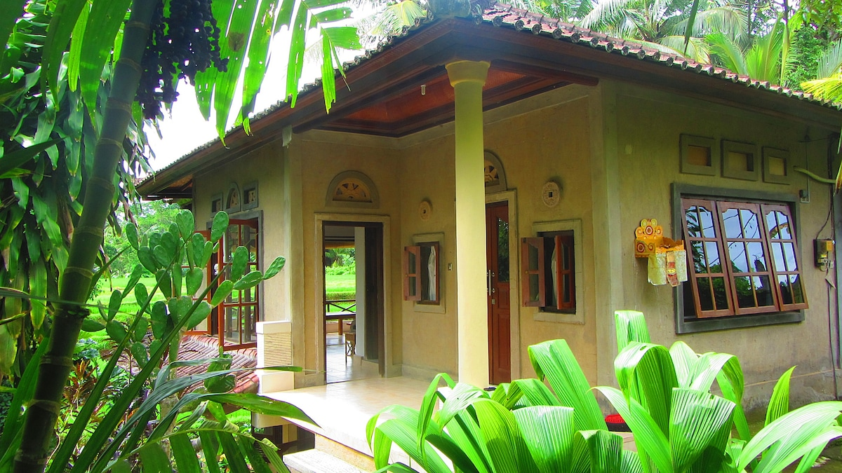 Entrance to the house through lush tropical garden. Epic view just beyond.