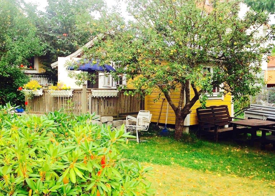 Charmigt litet hus mitt i Dalarö. - Dalarö