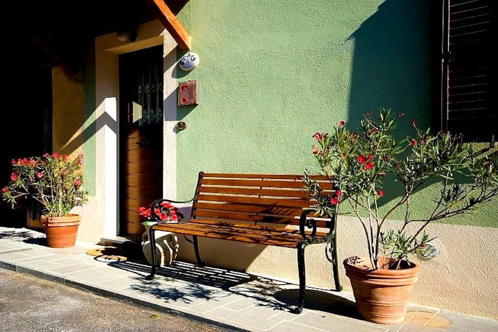 GREEN HOUSE- CASA VERDE /BAGNOREGIO - Castel Cellesi - House