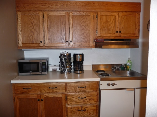 Small fridge, 2 burner stove top, microwave, sink, coffeemaker