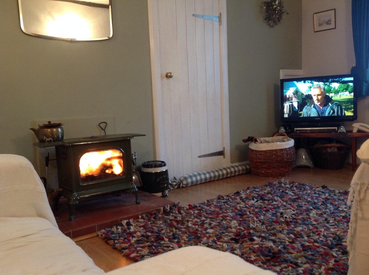 Wood burning stove in lounge