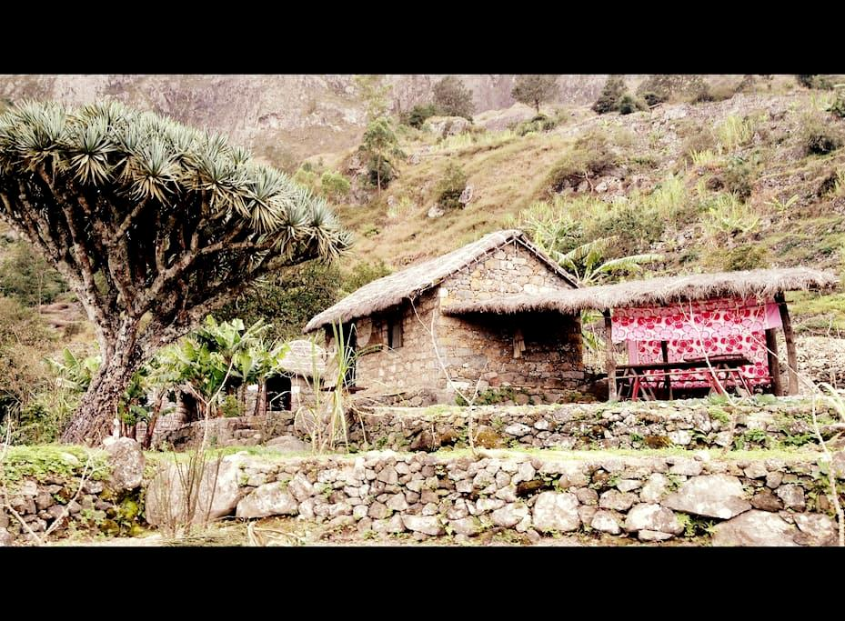 écolodge - capvert - Tchom di Meiu - Paul - Bed & Breakfast