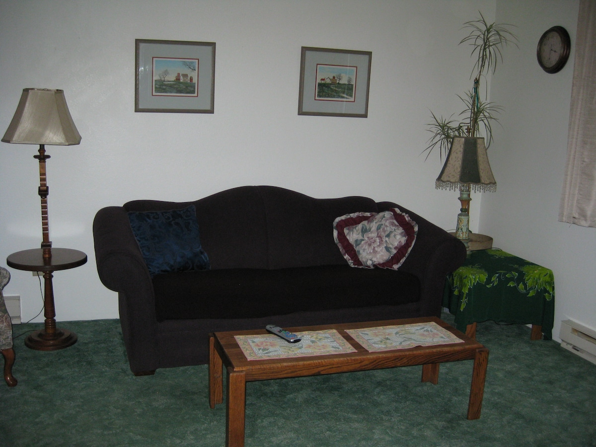 This Living Room Couch is also a Double Bed