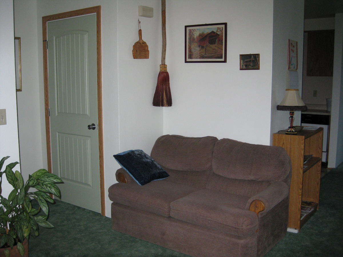 More Living Room Seating. Closet has a Single Fold Out Bed