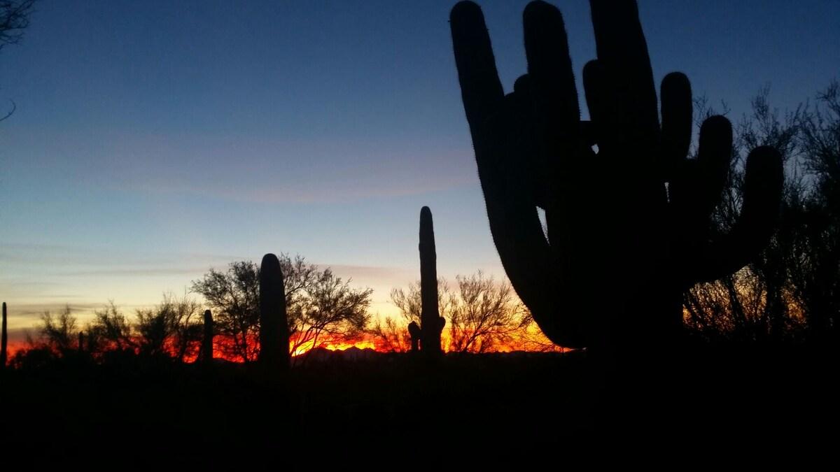 Panoramic sunsets