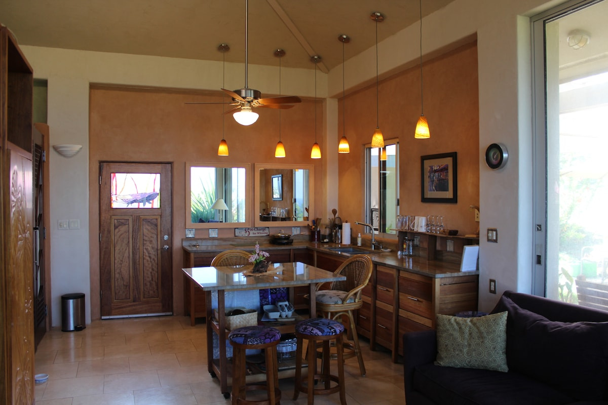 Eat-in kitchen area has full-sized refrigerator, electric grill, induction burners, and convection oven.