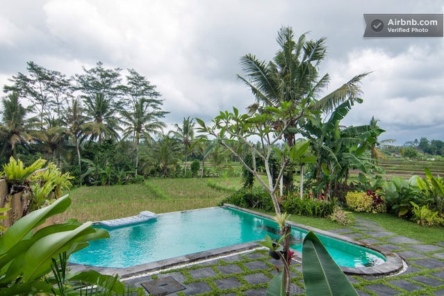 Ahh... an infinity pool set over the rice fields and jungle.
