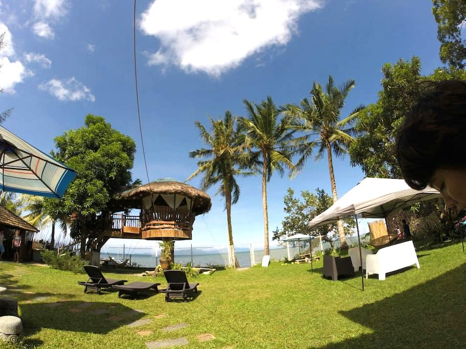 Lush green beach front villa - San Teodoro