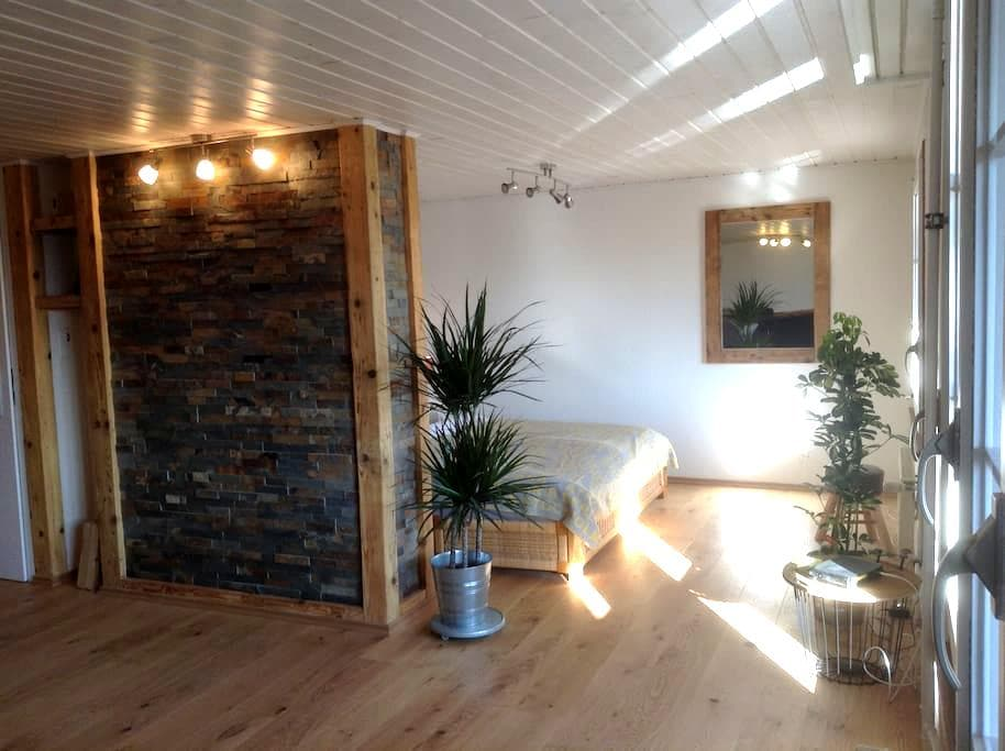 "Aarelodge riverside apartment ""stone"" - Unterseen - Huoneisto"