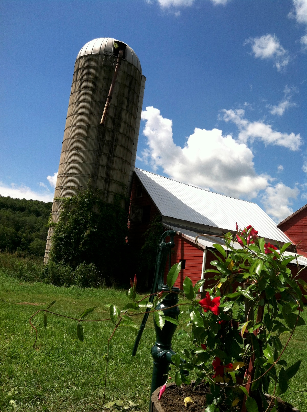 the barn and silo