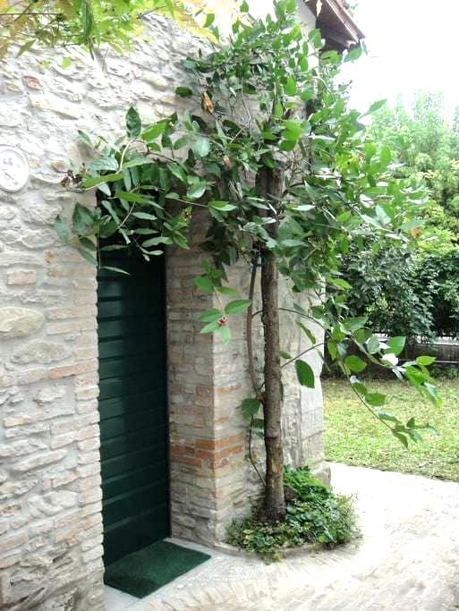 Cozy loft with double garden - Modigliana