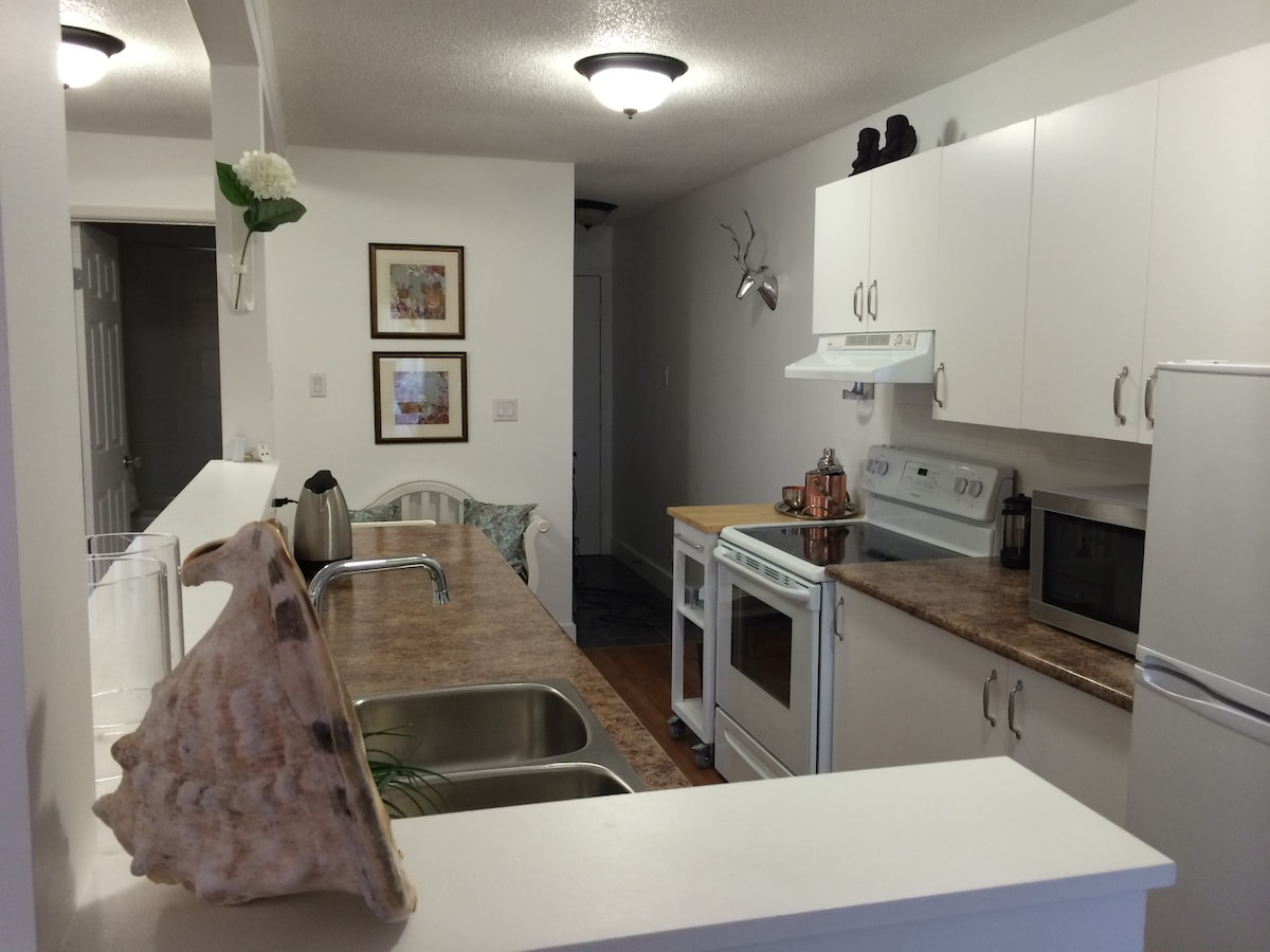 Brand New, Just renovated Kitchen
