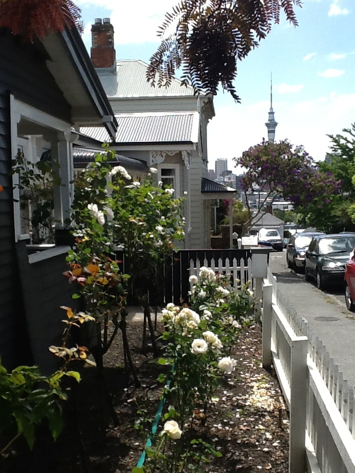 Looking down my quiet one-way street to downtown Auckland.