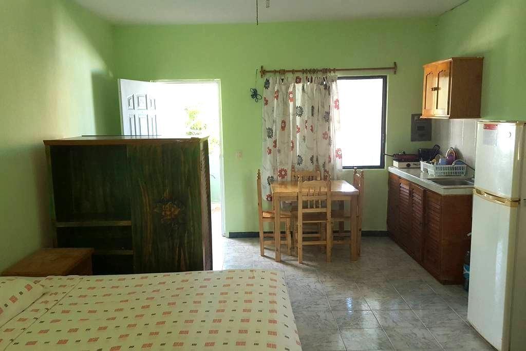Apartamento centrico amueblado!! - San Miguel de Cozumel