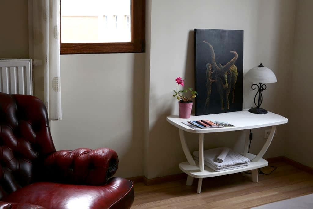 Room by the oldtown, bio breakfast - Gent - Appartement