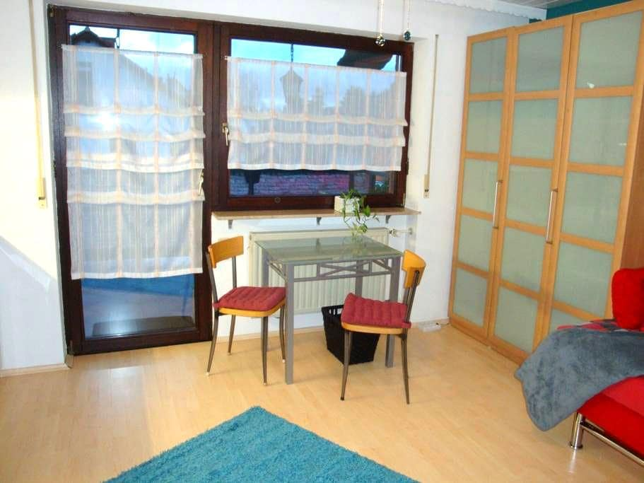 Einzimmer Appartement mit Bad und Balkon - Heidelberg - Appartement