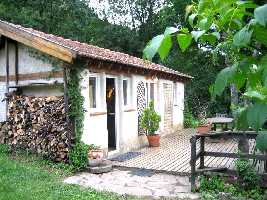 Petit gîte du Sedour - Surba - House