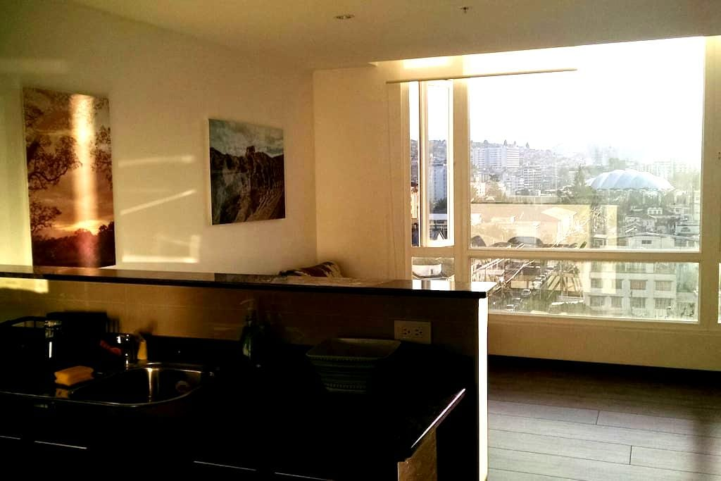 New Private suite, 1 br, great location and view. - Quito - Leilighet